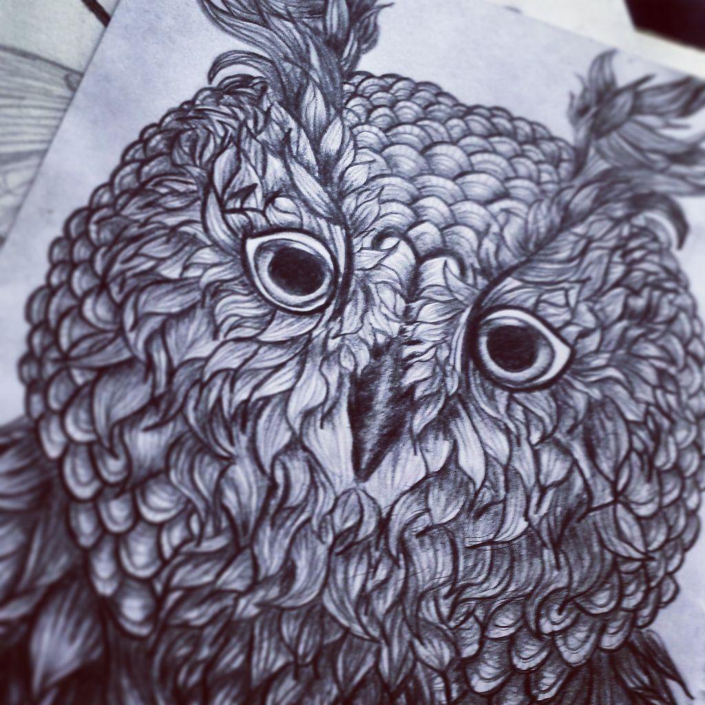 owl drawing greyscale blackandwhite art myart imadeth