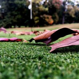 featured interesting art photography golf