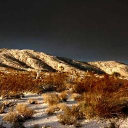 highcontrast snow desert