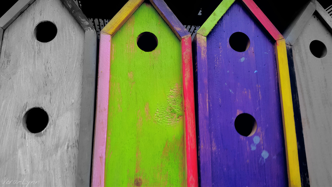 #blackandwhite #darkandlight #contrast #colorsplash #photography #close-up  #filltheframe  #circle #circles  #color #colorful  #birdhouse #accessories #decoration  #house