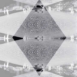 blackandwhite freetoedit photography negative
