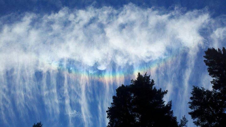 #HAARP #rainbow #clouds #nature #unnatural #trees  #color #photography #nofilter  #noedit