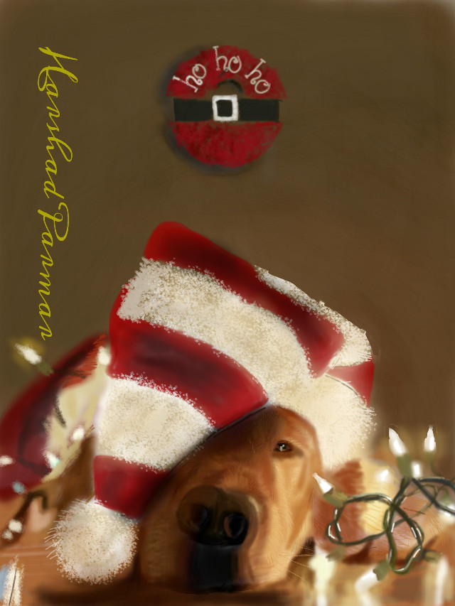 #wdpholiday  #petsandanimals#santa dog#christmad lights#for all pet lovers, hope u all like it my friends. Thanx in advance for ur likes, votes & reposts if any.