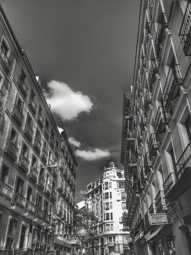 #blackandwhite  #madrid  #street
