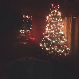 christmas christmastree winter warm lights
