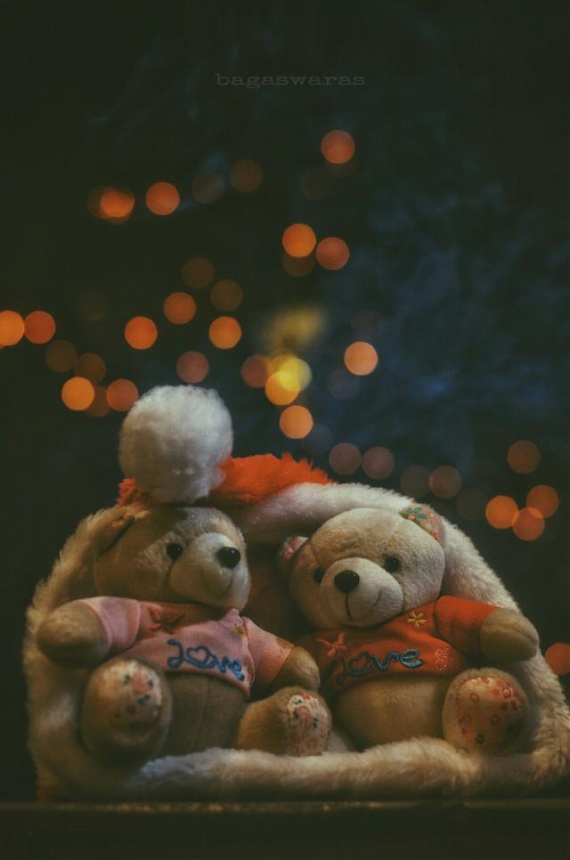 L.O.V.E. Merry Christmas Everyone!  #festive #love #christmas #photography
