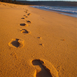 footprintsinthesand beach summer australian australia pcoutforawalk wppsunnyday pcfootsteps freetoedit