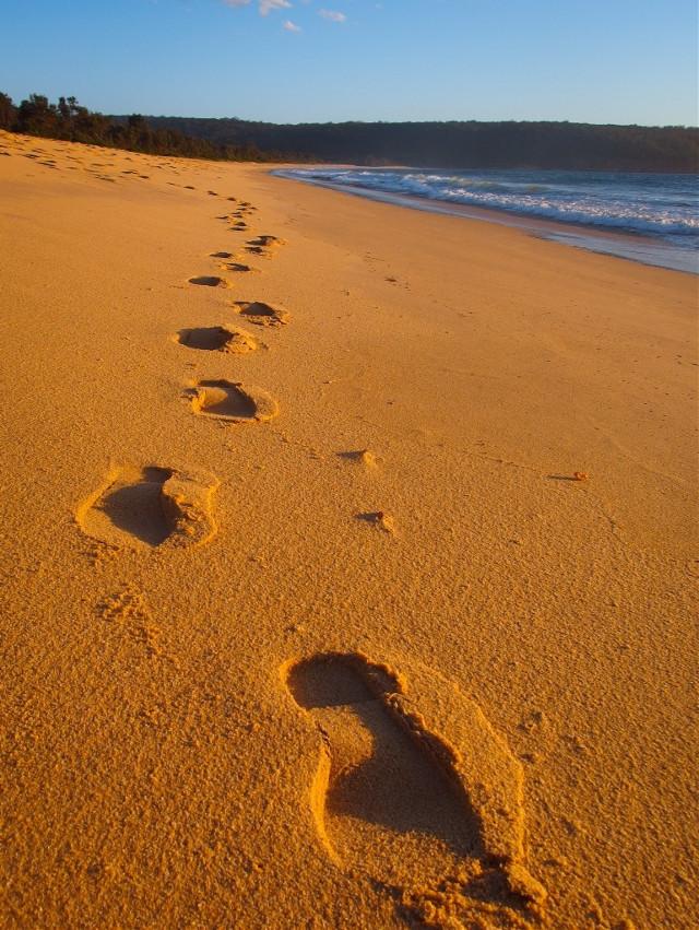 #footprintsinthesand #beach #summer #australian #australia  #sand #wppsunnyday #pcoutforawalk #freetoedit