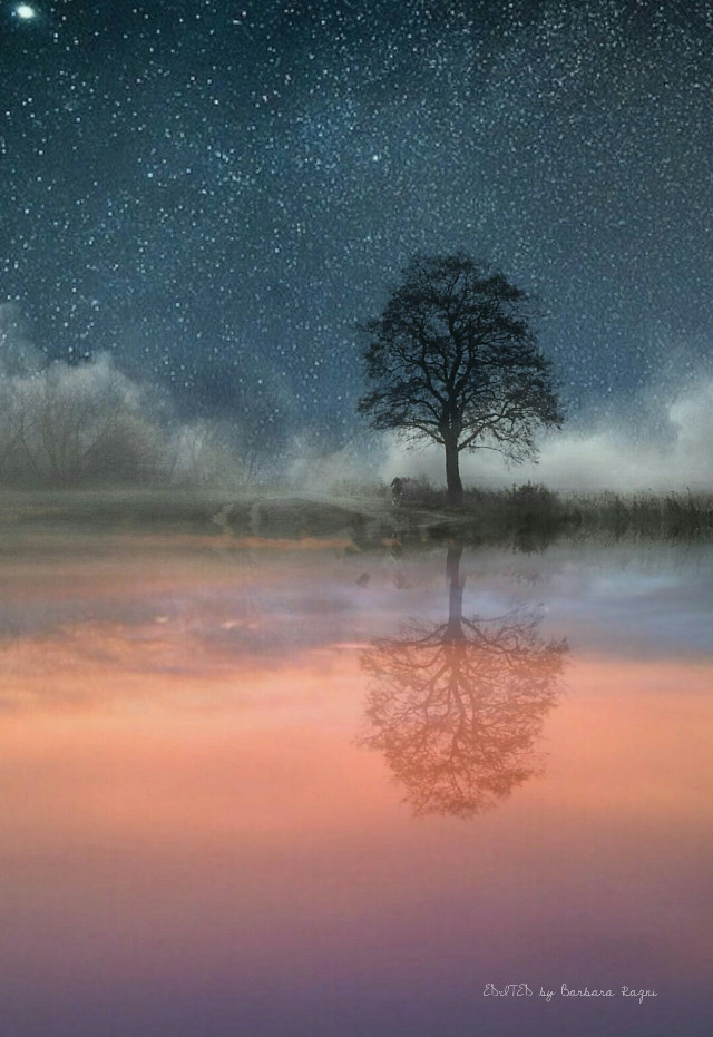 Night and day Thanks to @tokukimura and @lukaszmiszczak  for their pics I  #edited  #landscape  #doubleexposure