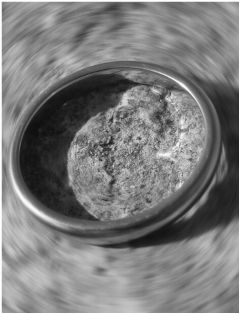 grey freetoedit bokeh blackandwhite photography