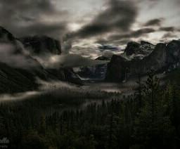 winter nature rain snow fog