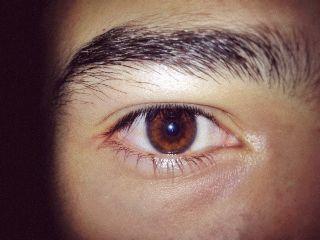 eyes browneyes interesting art nature