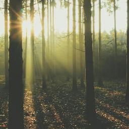 dailyinspiration rays