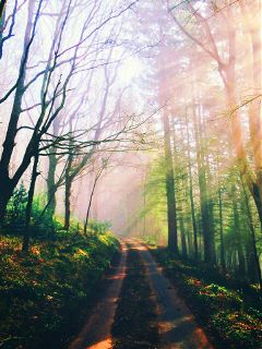 photography travel oldphoto nature freetoedit