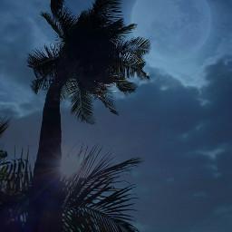 night photography moon blue_sky creative