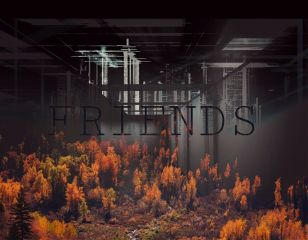 friends strong bond