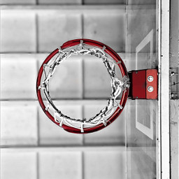 freetoedit basketball basketballneverstops sport redandblack wpp