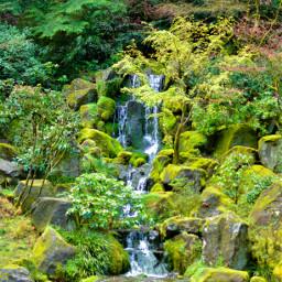 park getoutside pnwisbeautiful pdxjapanesegarden waterfall