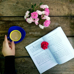 marwa_abbadi_photography coffe book flowers photos