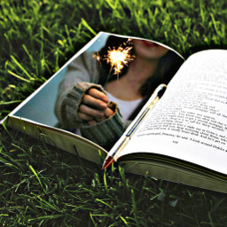 ftesparkler book grass light edit
