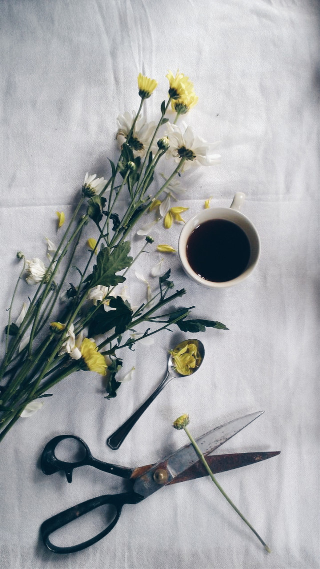 ♥♥ #coffee #spring #photography #emotions #flower #love #lifestyle #vsco #picsart #cup #stilllife #highangle