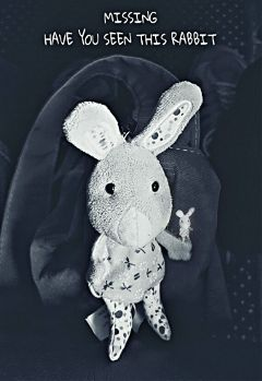 photograpy blackandwhite keyring rabbit love